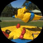 Sumo Wrestling Group Activity