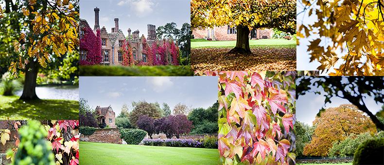 Seckford in Autumn